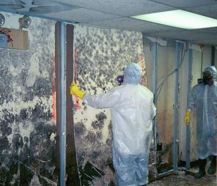 moldy walls being removed by men in full suits and masks in commercial building