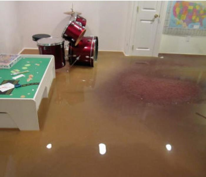 Mold Remediation What happens if you do not clean up after a flood?