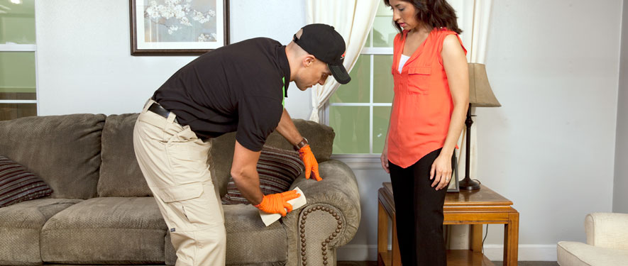 St Clair Shores, MI carpet upholstery cleaning
